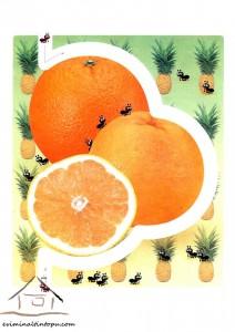 easy labyrinth orange
