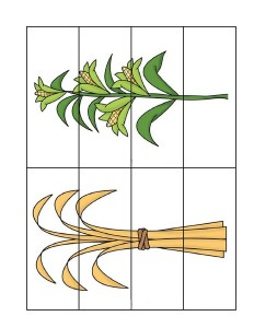 fall-autumn worksheets puzzles