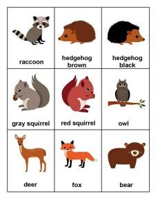 forest animals forkıds