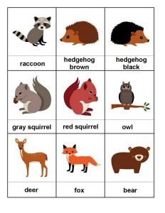 forest animals montessori
