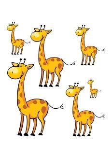 giraffe size sorting