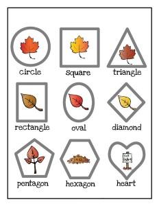 leaf themed shapes