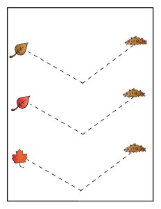 leaf themed tracing