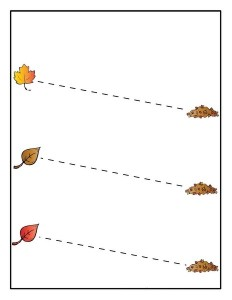 leaf themed tracing line