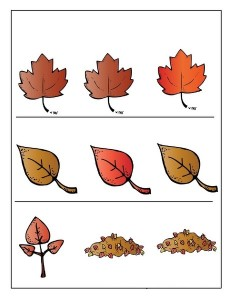 leaf themed which oneofthe difference