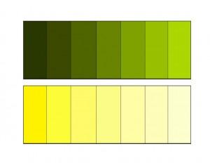 montessori color activities (2)