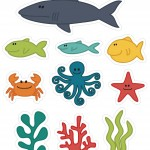 Ocean Animals Activities for Kıds