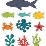 Ocean Animals Activities for Kıds