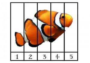 ocean animals puzzle fısh