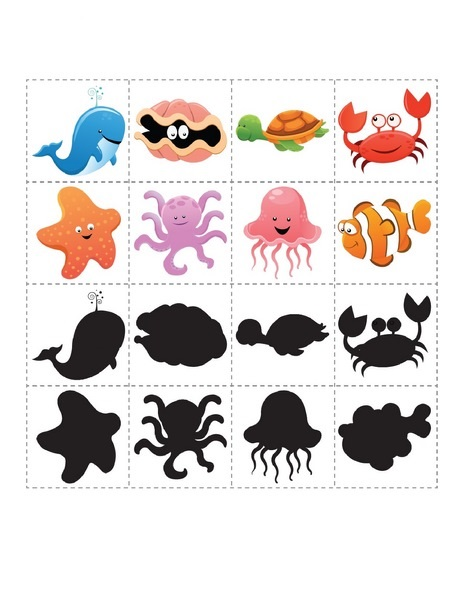 Opposites Preschool ocean animals workshee...