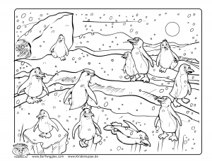 penguin coloring pages fun (2)