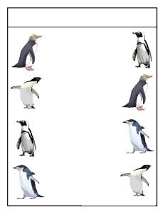 penguin matching  (1)