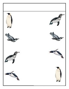 penguin matching  (3)