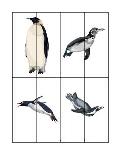 penguin puzzles