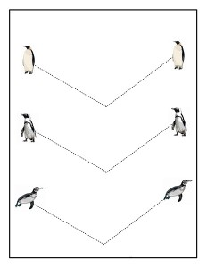 penguin tracing line acivity (4)