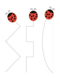 preschool ladybug tracing line