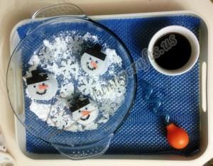 snowman science activities for preschoolers (7)