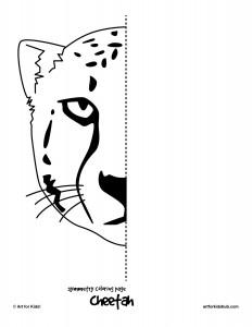 symmetry cheetah