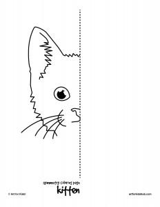 symmetry kitten