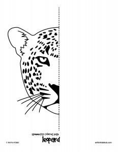 symmetry tiger