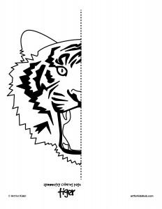 tiger symmetry