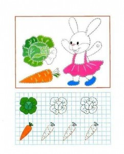 tracing line and coloring bunny