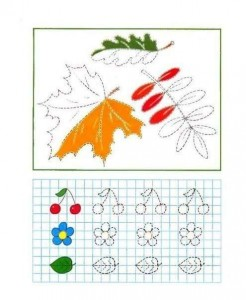 tracing line and coloring leaf