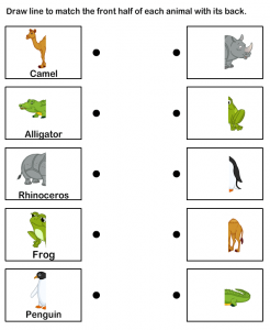 animals body parts printables (1)