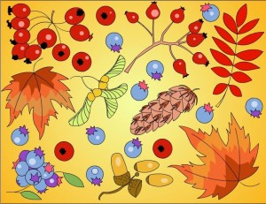 autumn coloring pages in classroom (15)