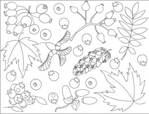 autumn coloring pages in classroom (16)