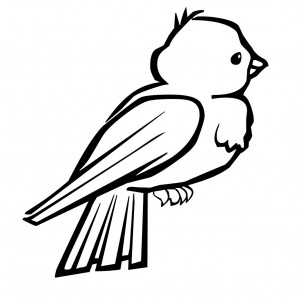 bird themed coloring pages (15)