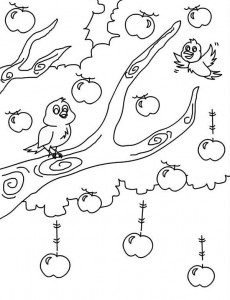 bird themed coloring pages (8)