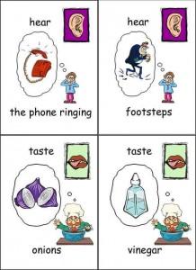 five senses cards printables for kıds (13)