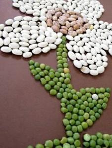 flower seed craft
