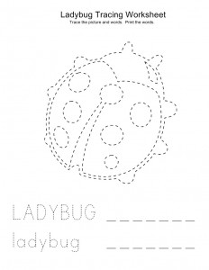 ladybug math free  worksheets for kıds (5)
