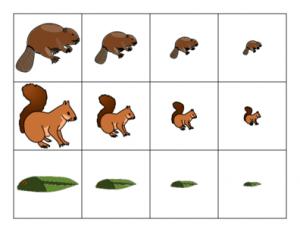 measurement worksheets for kıds (1)