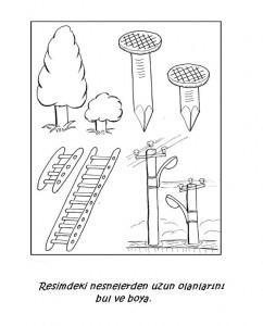 measurement worksheets for kıds (3)