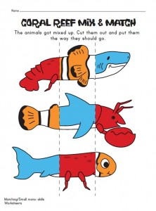 ocean animals mix and match