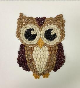 owl seed craft