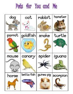 Cat And Dog Adoption Games