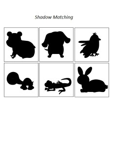 pets shadow matching (2)