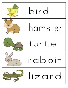 pets word activity (1)