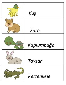 pets word activity (2)