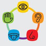 preschool five sense worksheets (10)