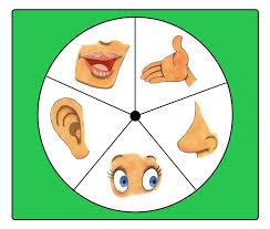 preschool five sense worksheets (11)