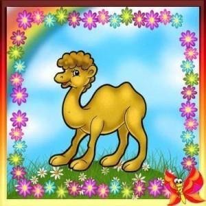 sweet animal cards (11)