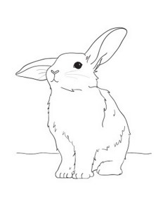 bunny coloring pages (3)