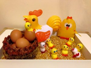 chicken life cycle activities and crafts for kids