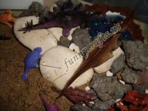 dinosaur sensory play for kids (2)