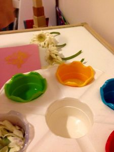 flowers theme preschool activities and crafts